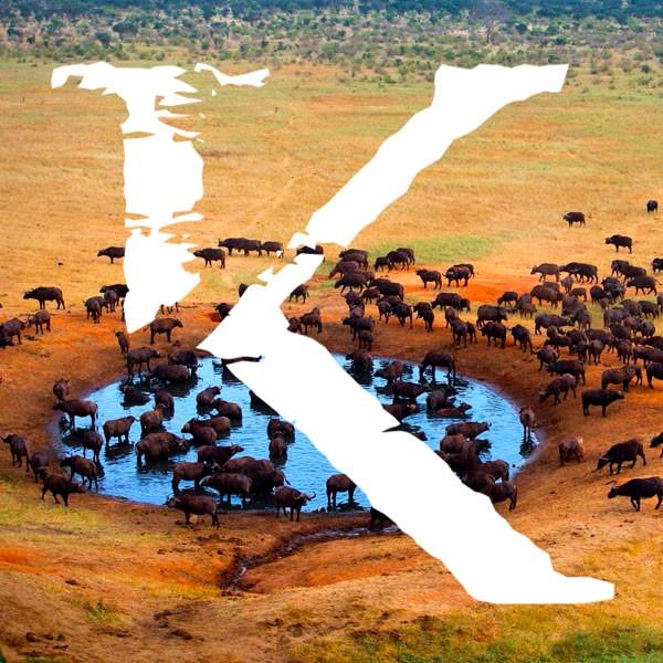 Viajes y safaris a Tanzania KINSAI