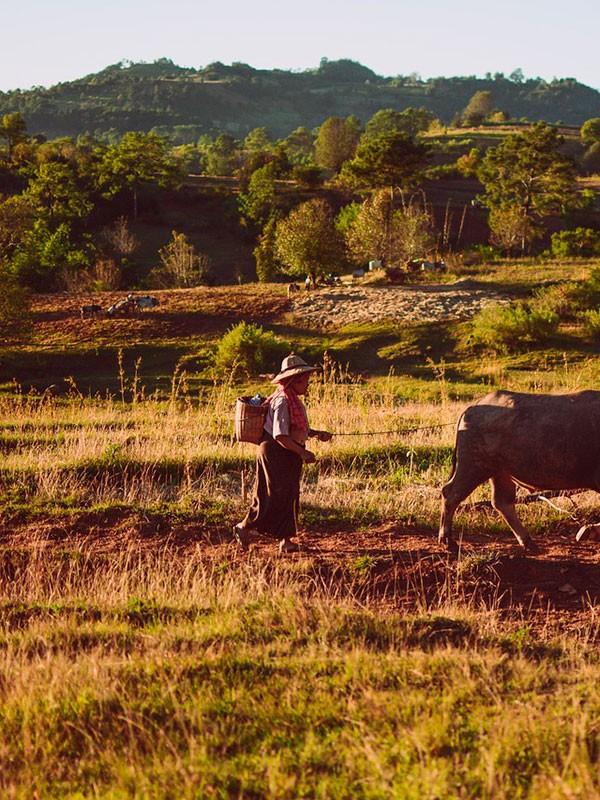 Visita a Kalaw en los viajes a Myanmar